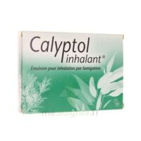 CALYPTOL INHALANT, émulsion pour inhalation par fumigation à ROMORANTIN-LANTHENAY