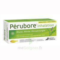 PERUBORE Caps inhalation par vapeur inhalation Plq/15 à ROMORANTIN-LANTHENAY